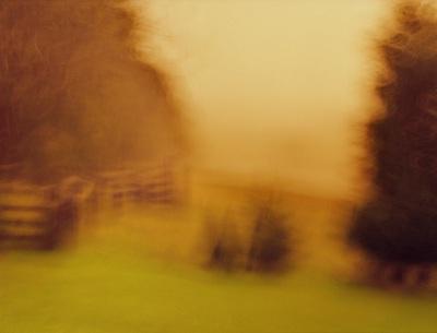 Bella Vista, photograph, 86 x 68cm, $3.000