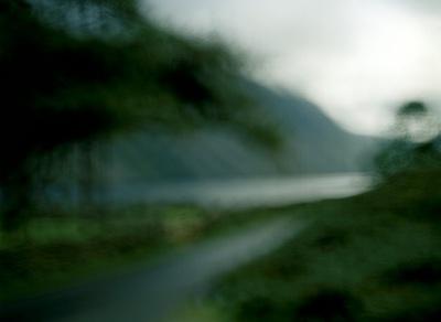 Country Lane, photograph, 64 x 49cm, $1.800
