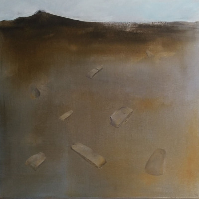 Shards: tools in the Landscape, 2016,$3000, Acrylic on canvas, 450x450mm