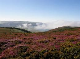 Exmoor National Park in the locality