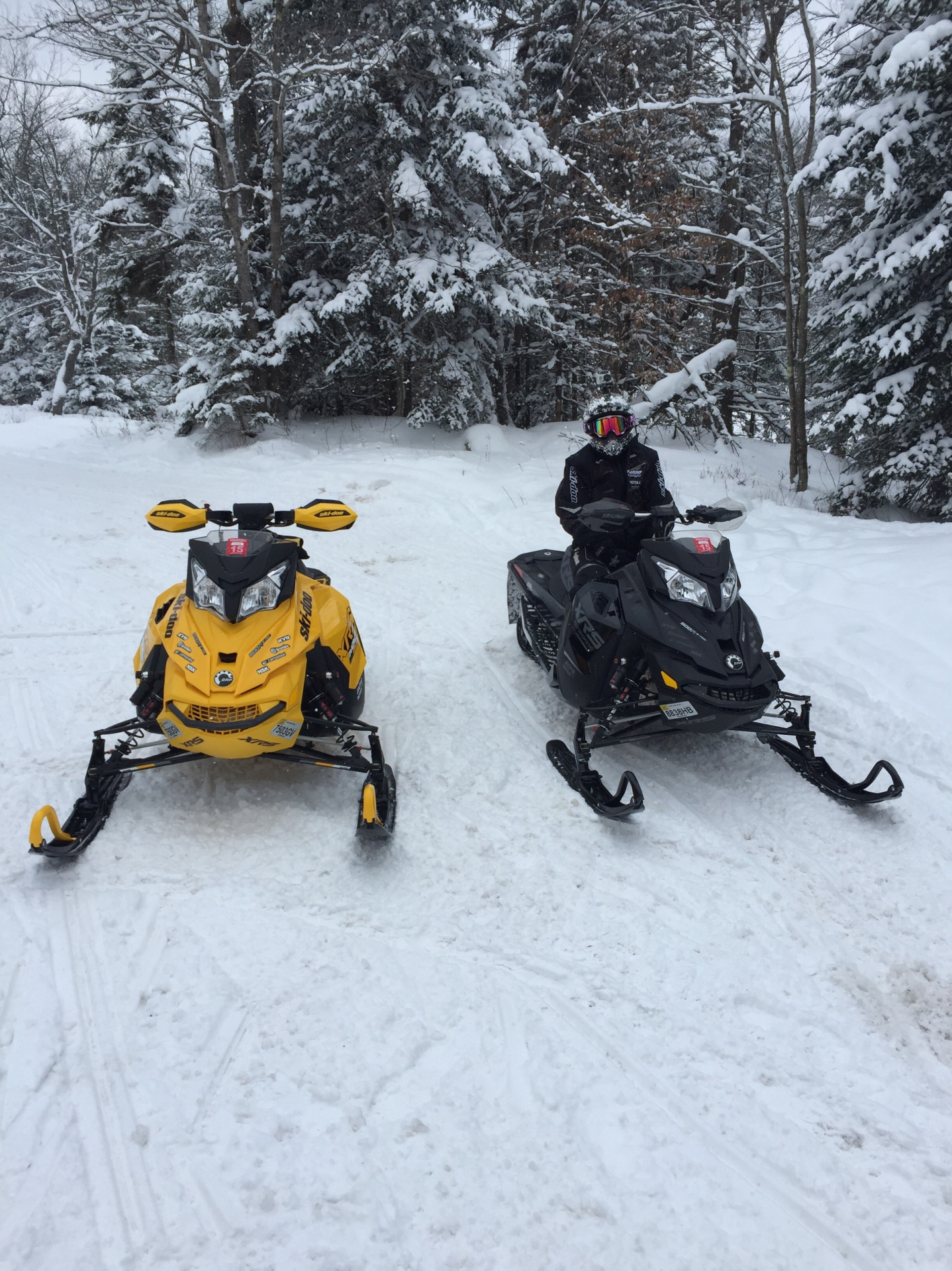 2 snowmobiles and a women