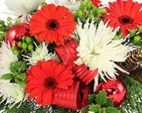 Copyrighted content provided by <a href='http://www.flowershopnetwork.com'>FlowerShopNetwork.com</a>