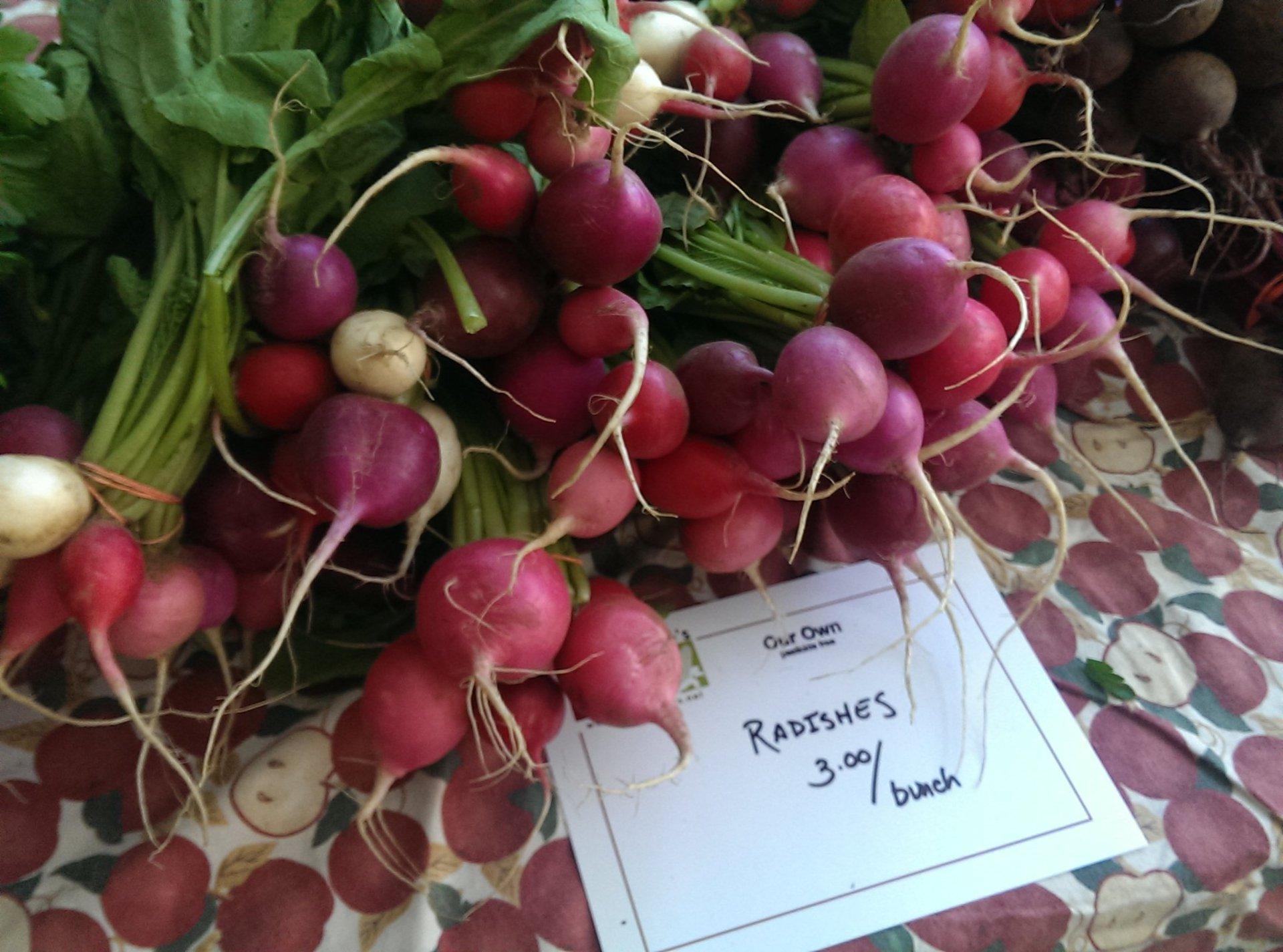 Andover Farmers' Market