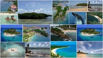 Playas dominicanas: las más hermosas del planeta
