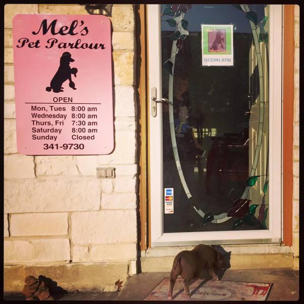 Violet loves Mel's!