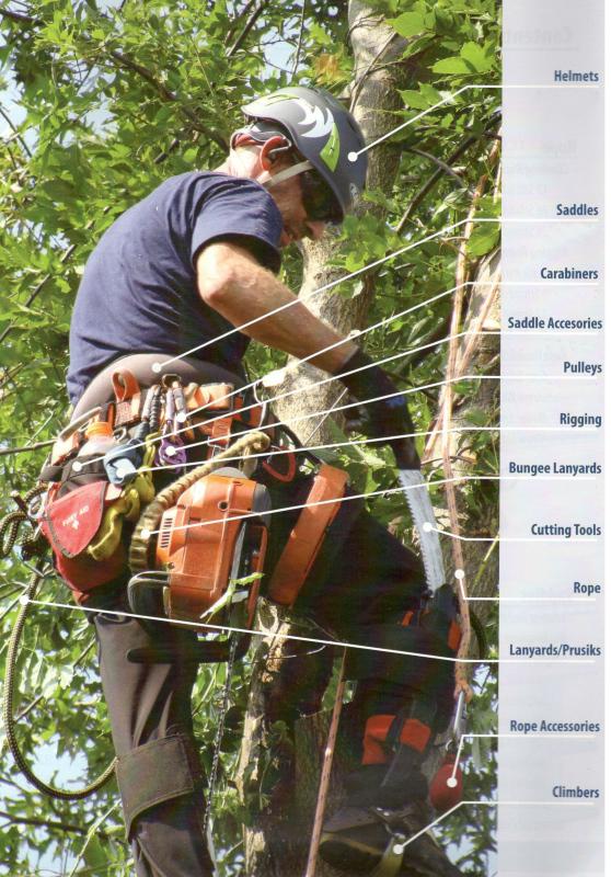 Arborist Supplies  Tree Climbing Gear  Bartlett
