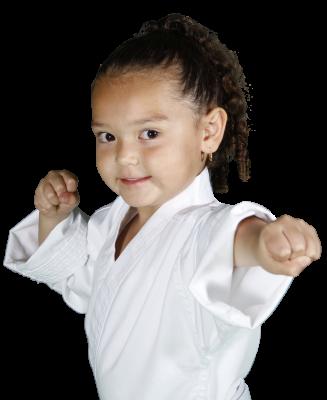 Stapleton Family Karate, Karate, Taekwondo, Martial Arts, Karate for children, karate for kids, Taekwondo for kids, Taekwondo for Children, Karate in Denver, Taekwondo in Denver, Karate in Stapleton, Fall activities, Summer activities, Winter activities, Spring activities, Martial Arts in Denver,
