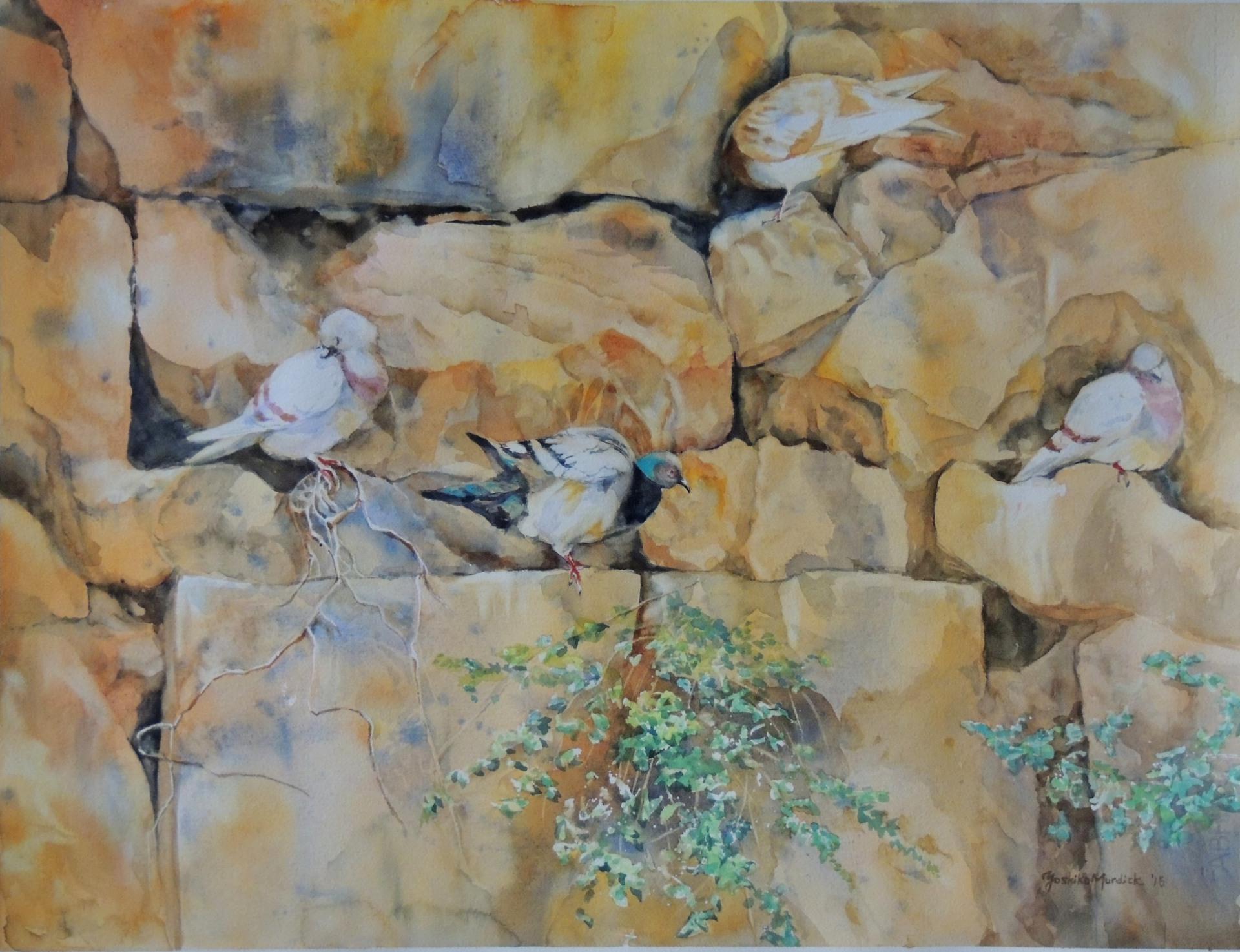 Doves in Barcelona, by Yoshiko Murdick