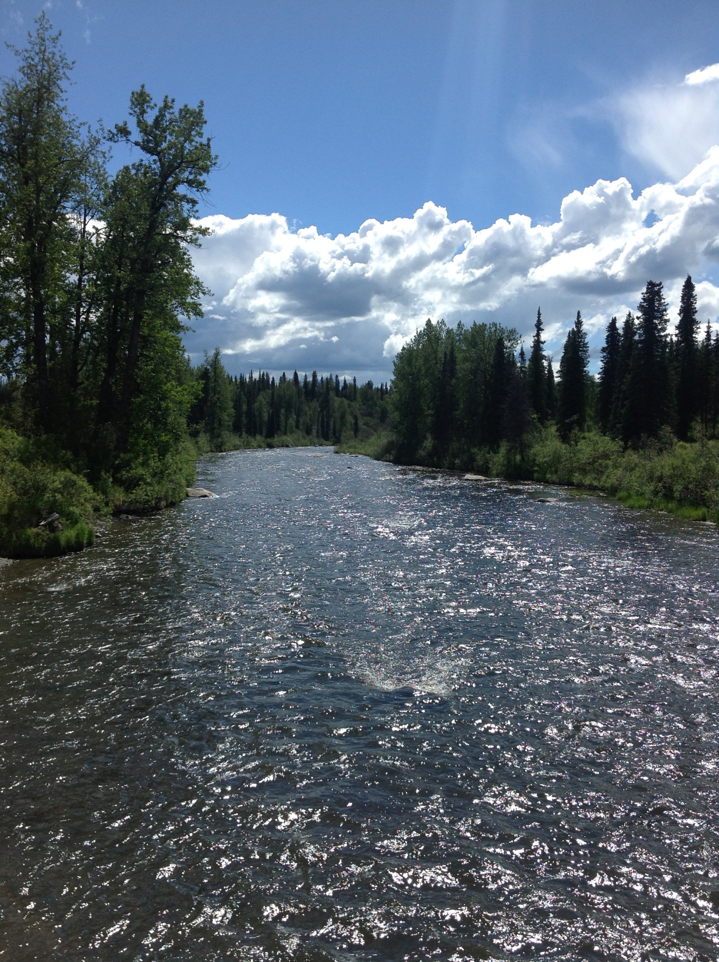 area river