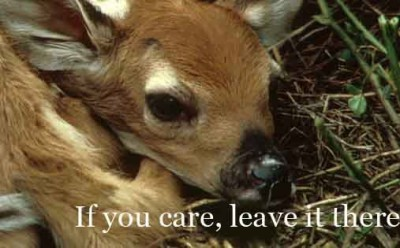 If You Care, Leave it There