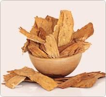viagra-naturel-racine-astragale