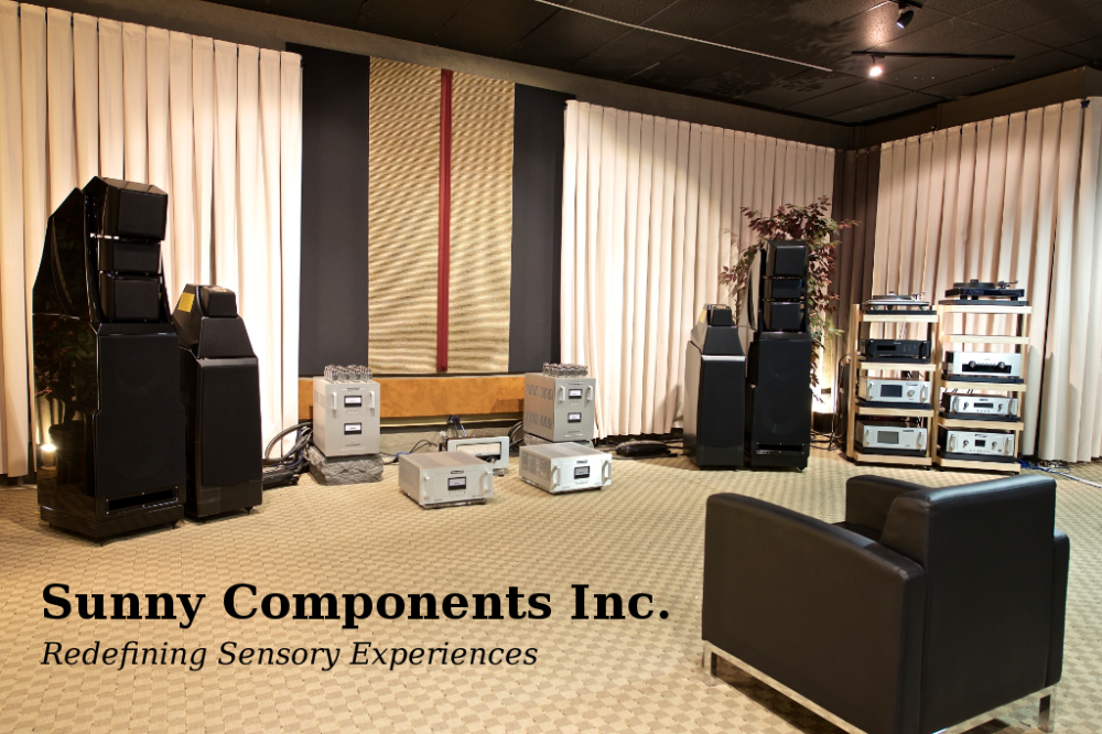A view of the Sunny Audio VIdeo showroom with Wilson Audio and Audio Research products