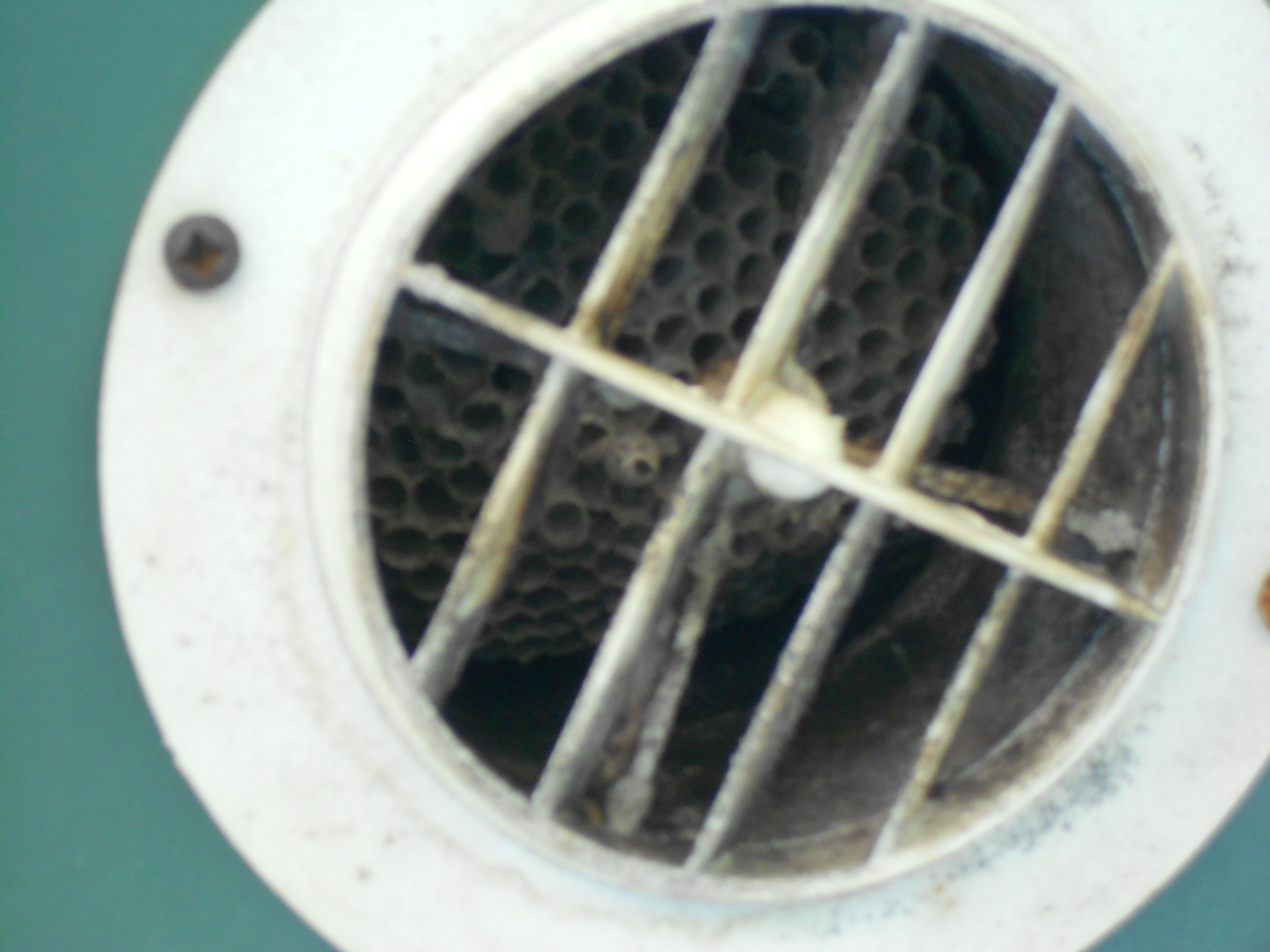 Vent is plugged up with a wasp nest, restricting air flow.
