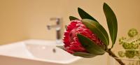We love flowers :)