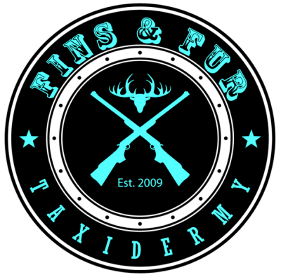 fins and fur taxidermy logo
