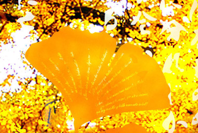 Sarah Hall's painted Ginkgo with Goethe's poem etched into the leaf