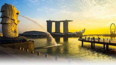 YL Singapore