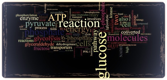 Phd in biology online