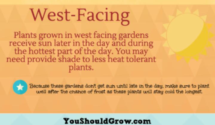 West-Facing