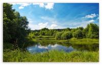 Pond Fishing Strategies