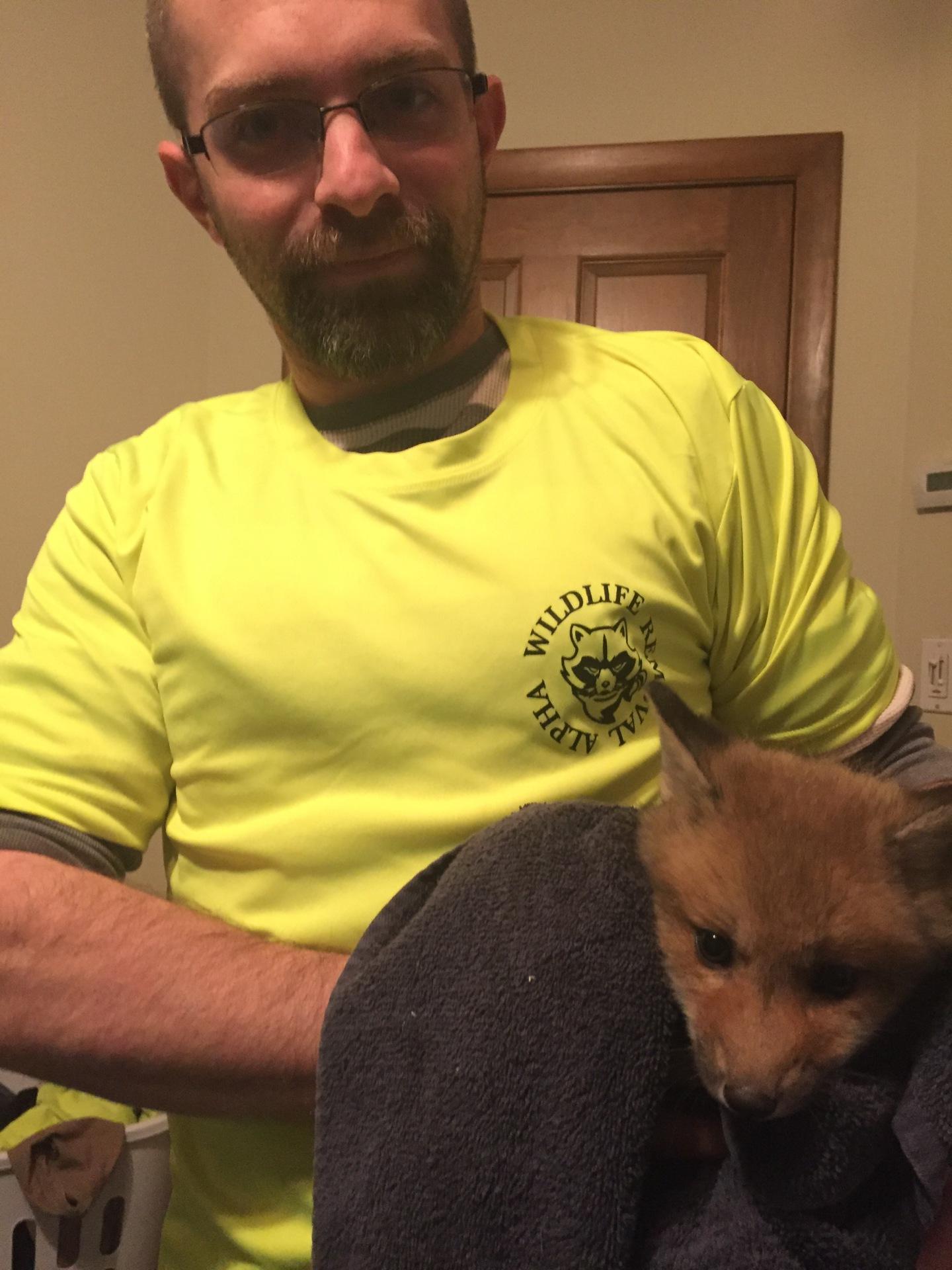 fox removal
