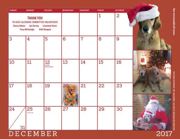 Adopt a Golden Retriever! GRCGLA Rescue 2017 Rescue Calendar is here.