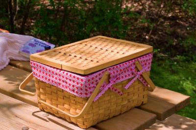 Surprise Picnic Basket