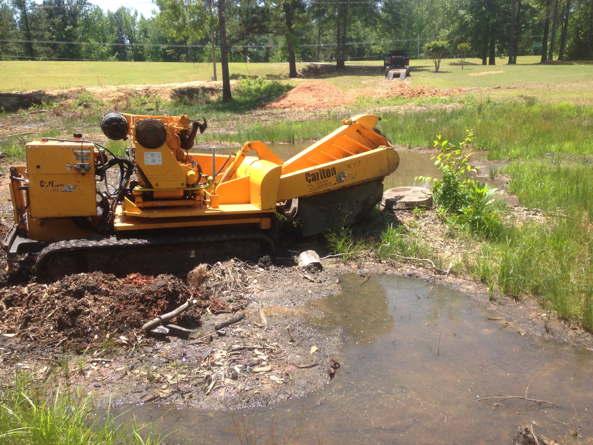 Stump Grinding in Wetumpka