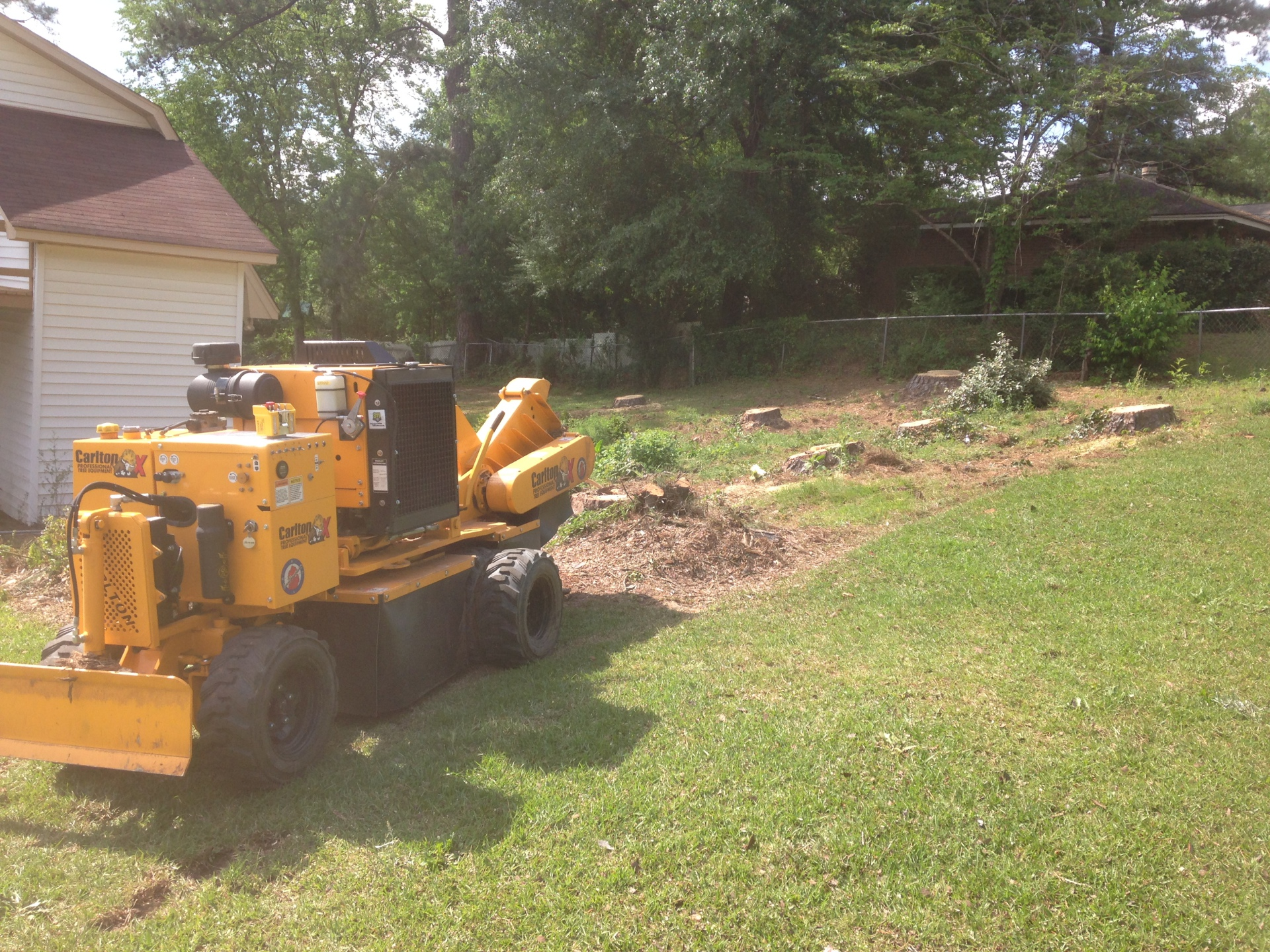 Stump Grinding in Prattville