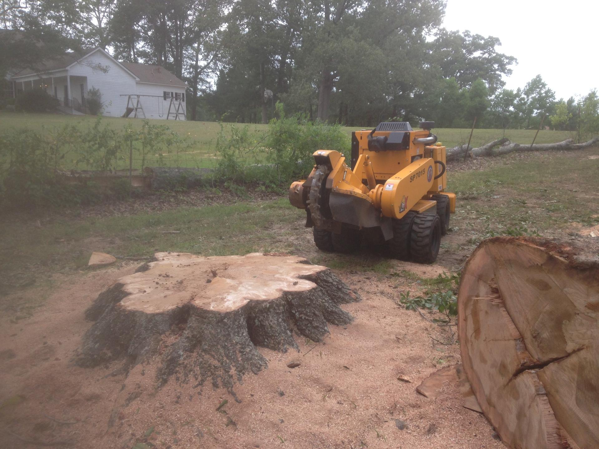 Grinding a Big Stump in Hope Hull