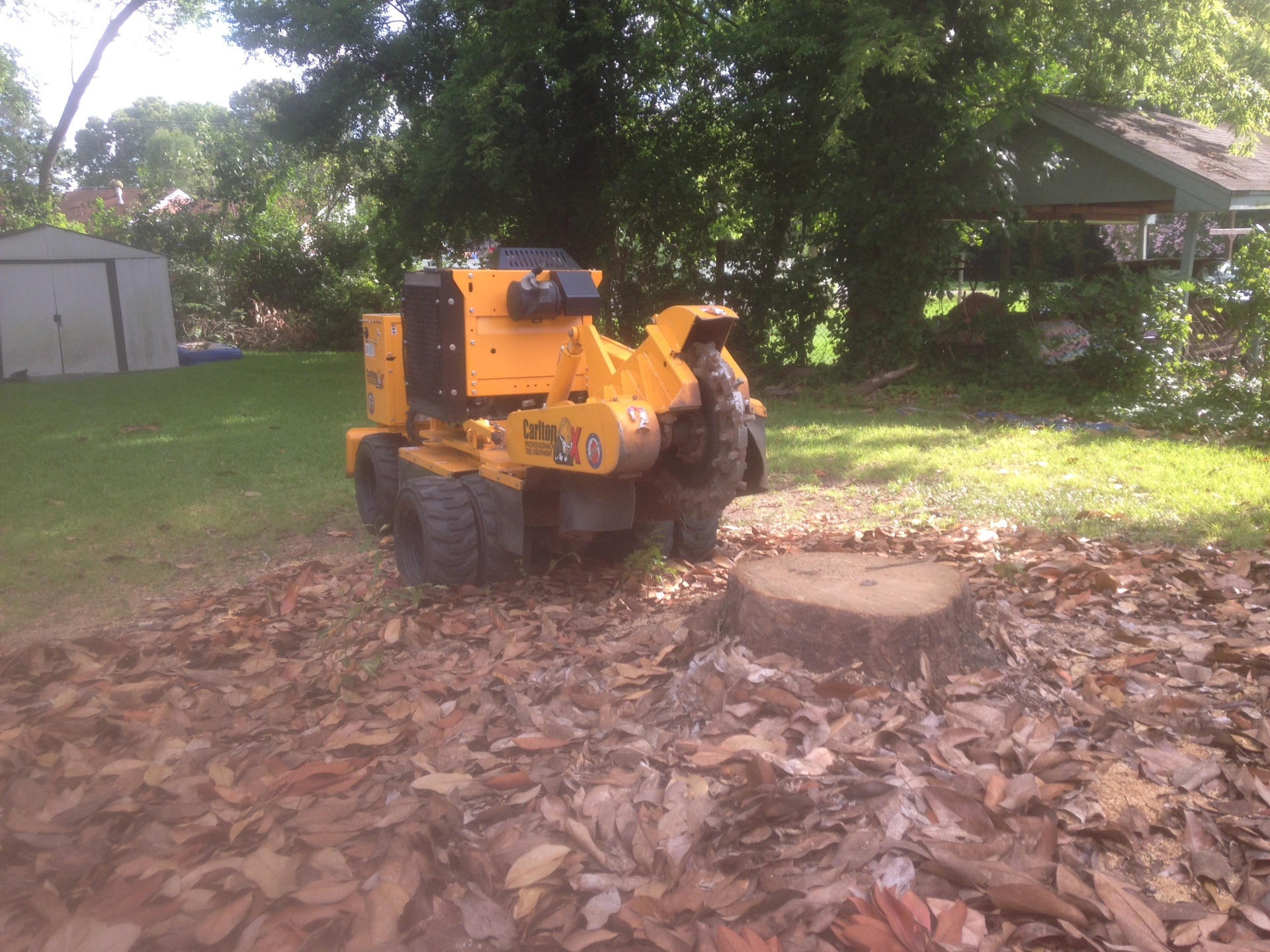 Montgomery Stump Grinding