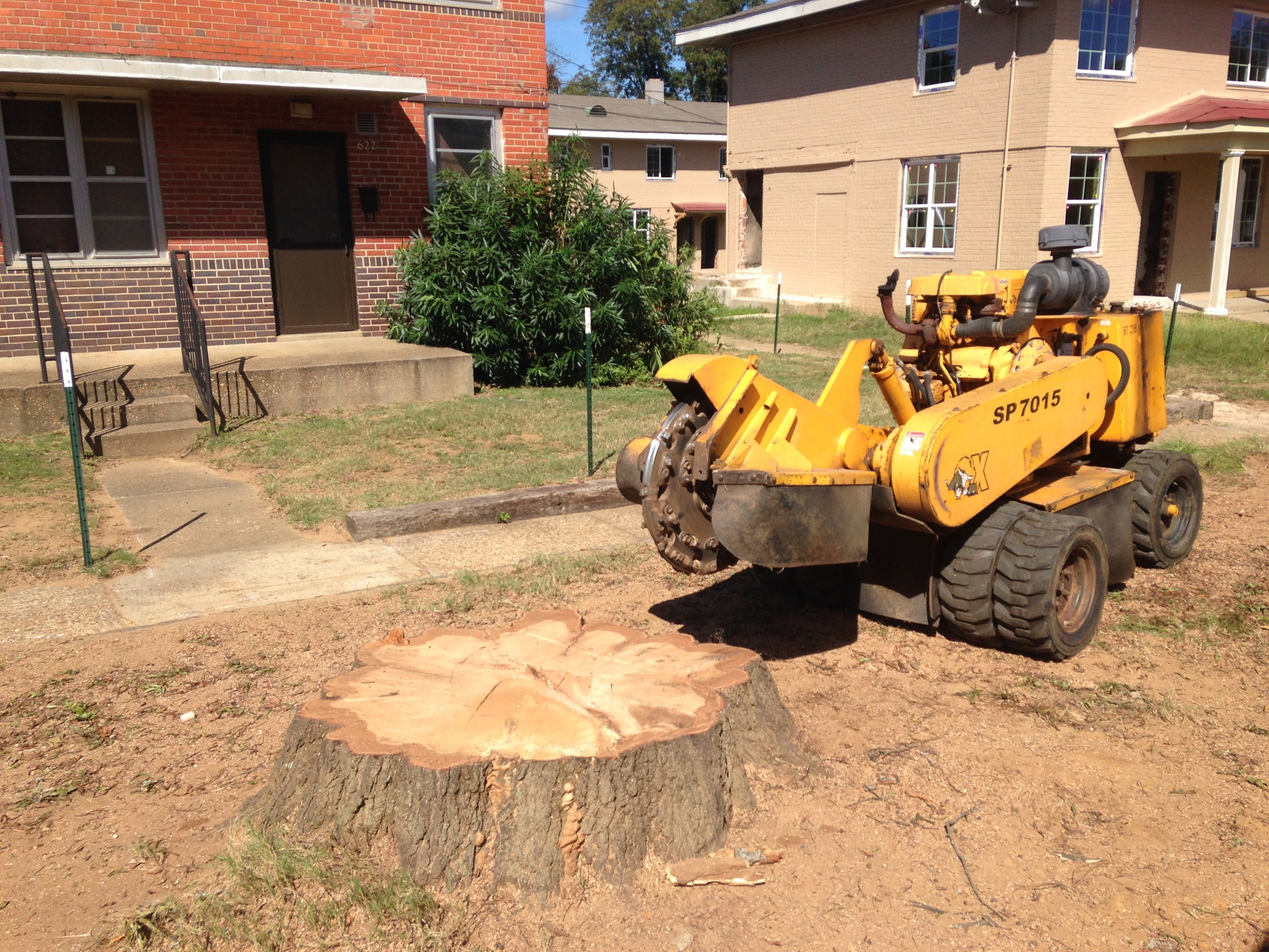 Stump Grinding in Prattville