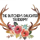 The Butcher's Daughter Taxidermy