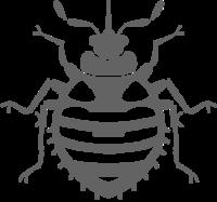 Bedbugace Logo