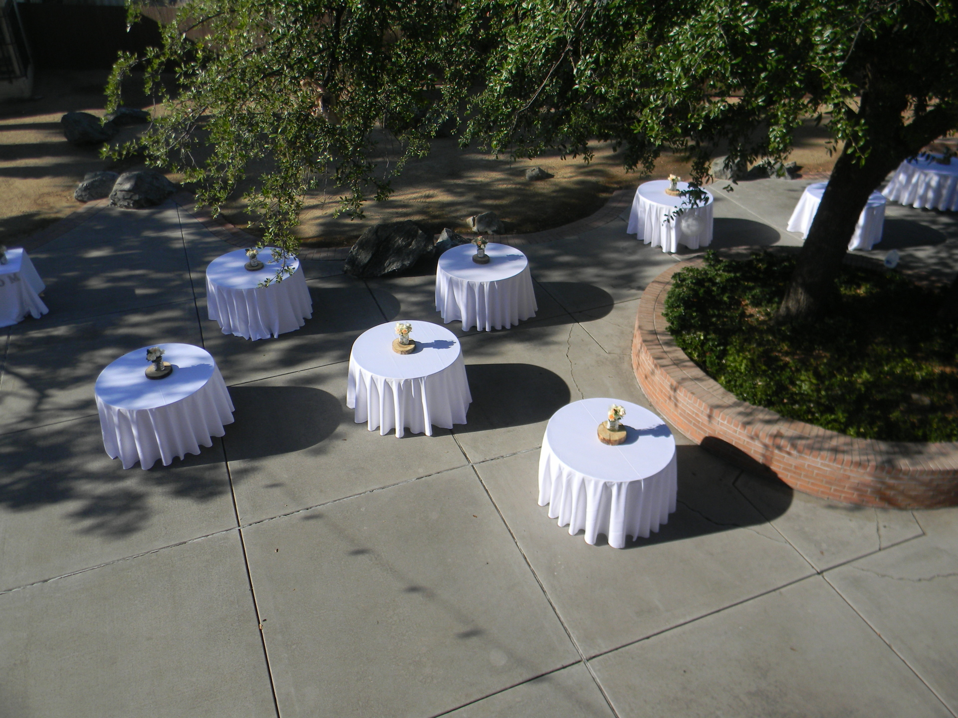 weddings,outdoor wedding