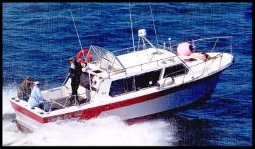 mako charter halibut fishing homer alaska