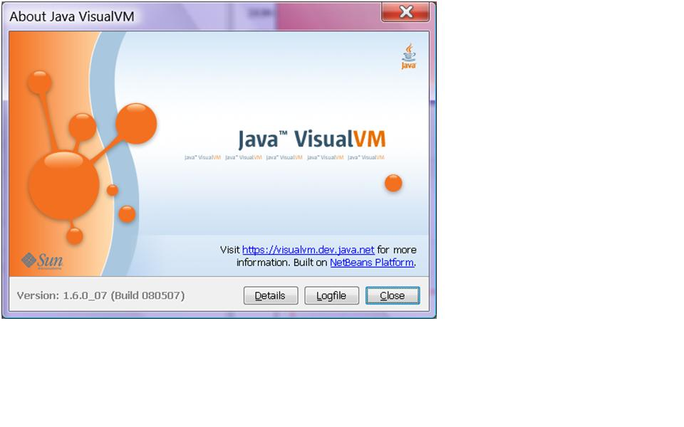 Visual VM About window
