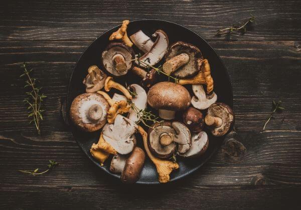 All the Benefits of Mushrooms in This Delicious Vegan Shepherd's Pie