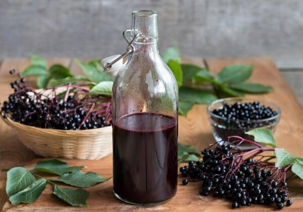 The Many Benefits of Immune-Boosting Elderberry