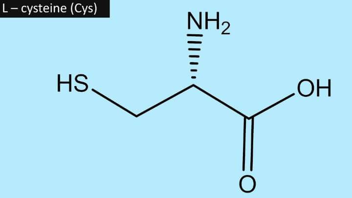 L-cysteine (cys) scientific formula