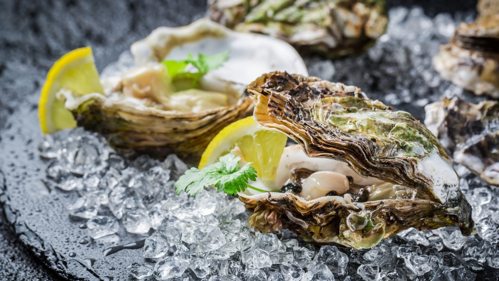 Oysters on half shell over ice