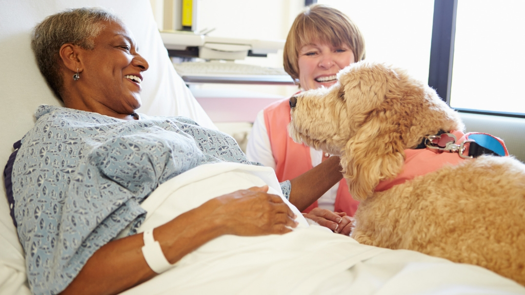 A woman visiting her friend at the hospital with her dog