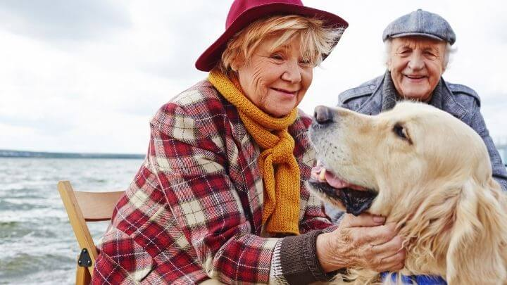 An elderly couple petting their dog near the sea