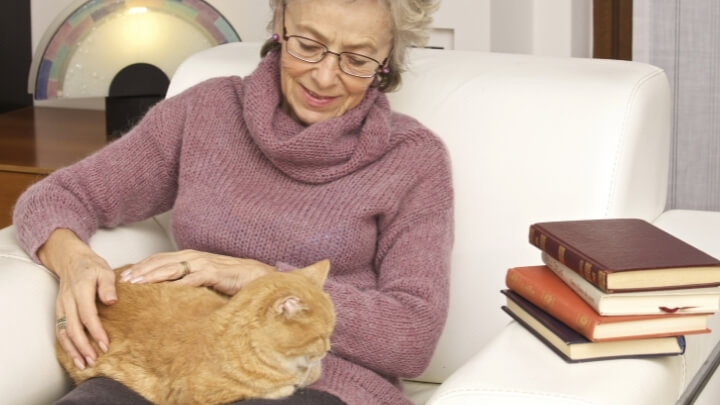 A woman relaxing with her cat on her lap