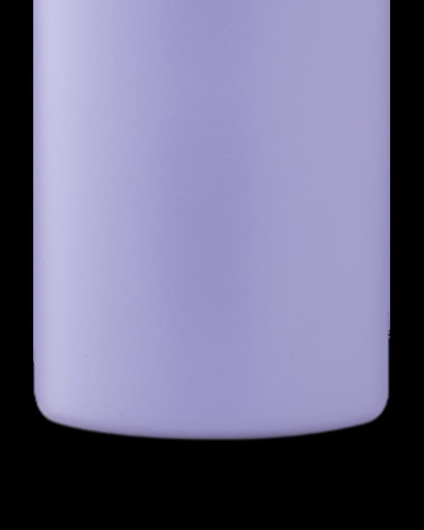 Erica Reusable Stainless Steel Water Bottle