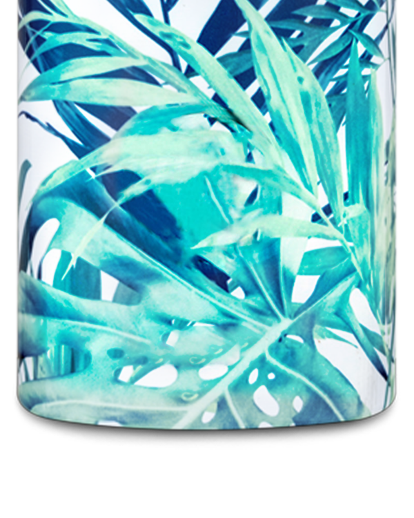 Lush Reusable Insulated Stainless Steel Water Bottle