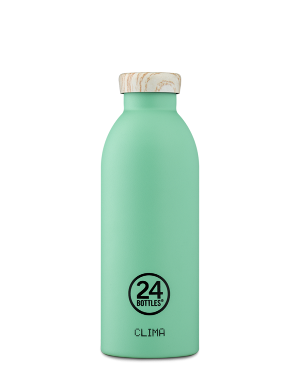 Mint Reusable Insulated Bottle