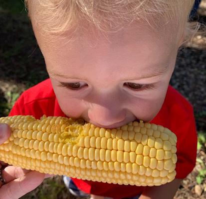 Boy eating corn Sized IMG 2045