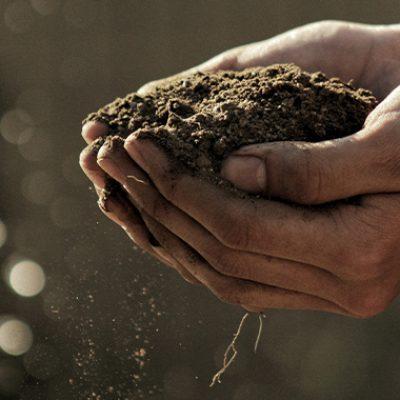 Nutrient Management Plans