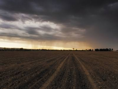Is Smoke from Wildfires Affecting Crop Yields?